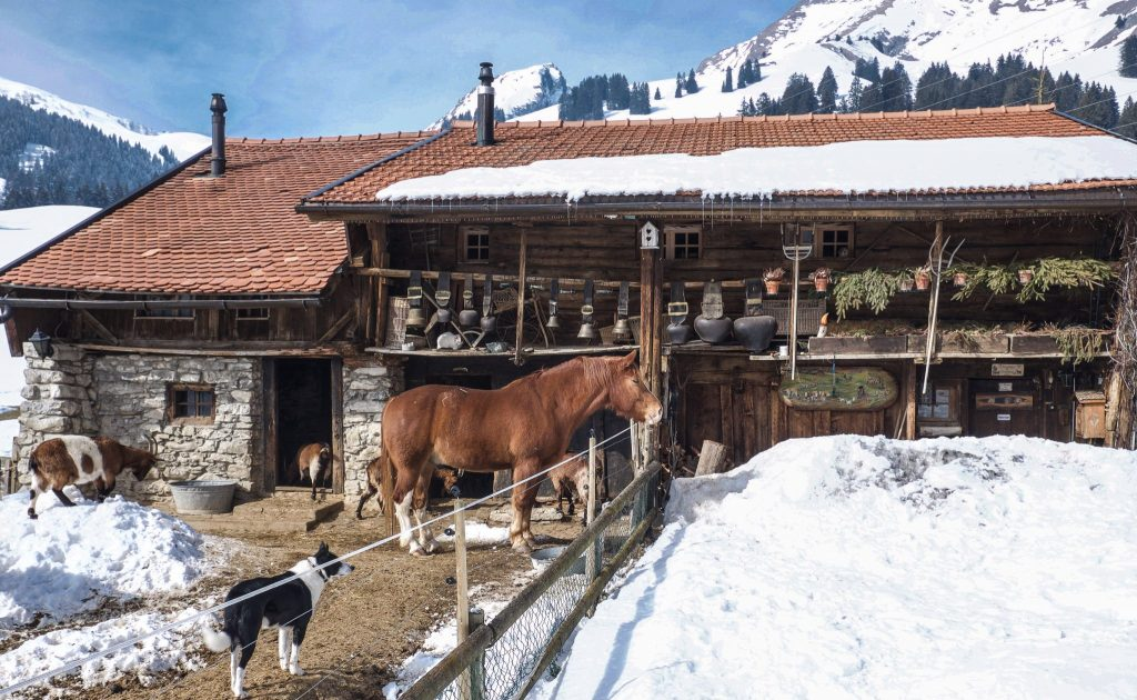 Rustic Chalet with Animals Switzerland