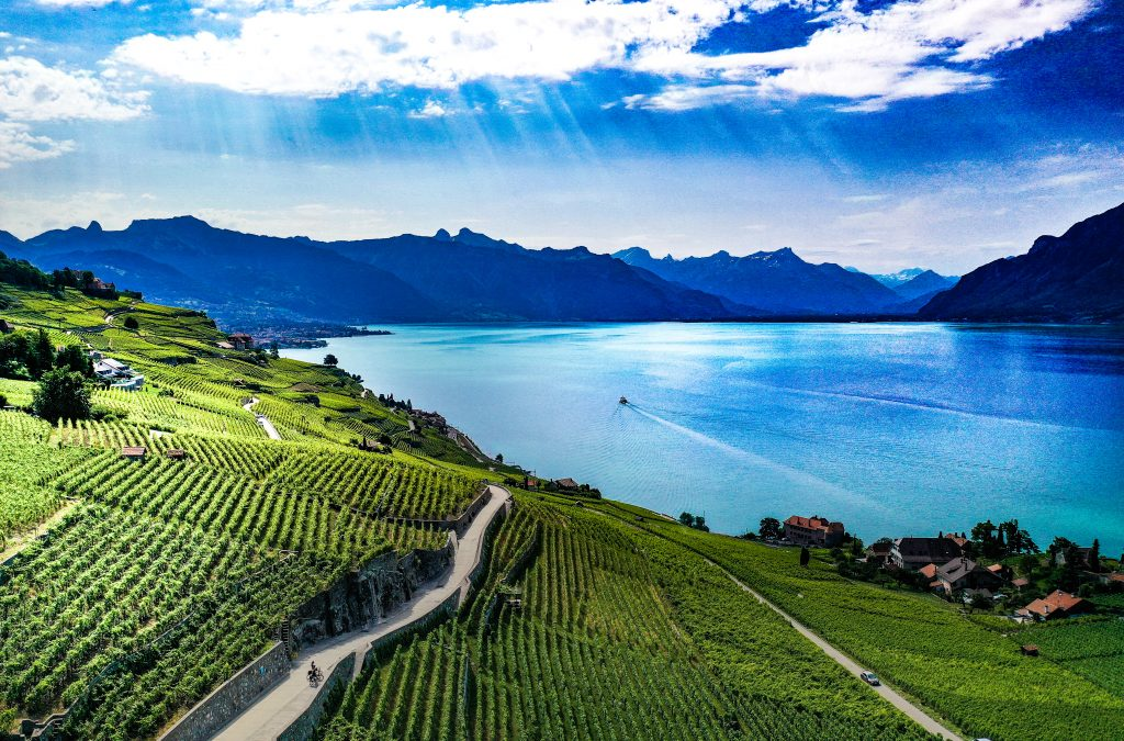 Lavaux vineyards Switzerland, Lake Geneva