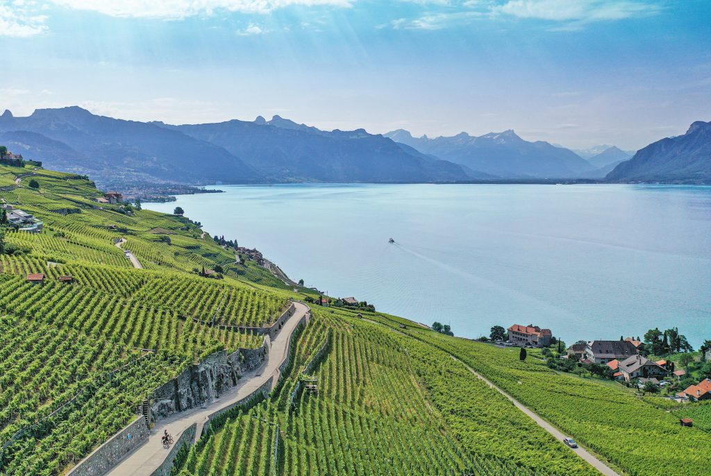 Lavaux Vineyards and Lake Geneva Switzerland