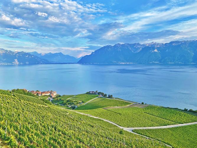 Lavaux Wine Country, Lake Geneva, Switzerland