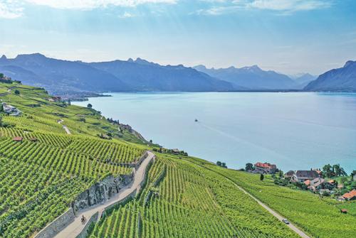 Lavaux Switzerland