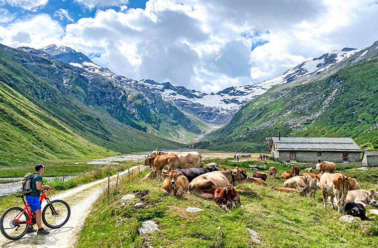 Val Fex Engadin Switzerland